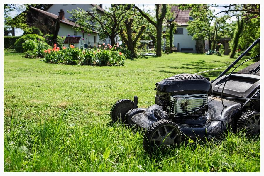 Garten profi heimservice for Garten arbeiten
